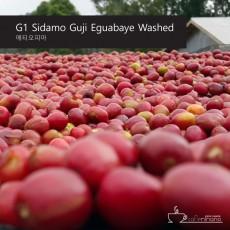 G1 시다모 구지 이과바예 워시드